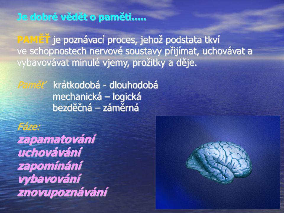 Je dobré vědět o paměti.....