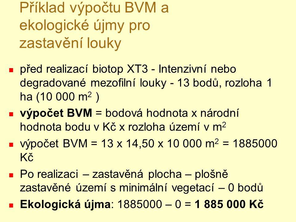 Příklad výpočtu BVM a ekologické újmy pro zastavění louky před realizací biotop XT3 - Intenzivní nebo degradované mezofilní louky - 13 bodů, rozloha 1