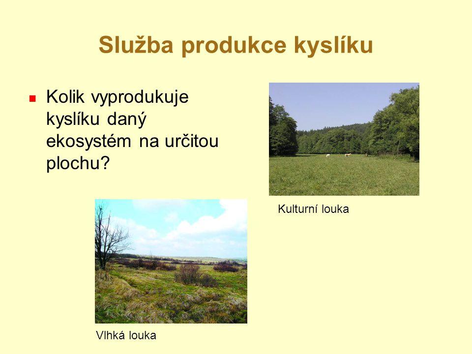Služba produkce kyslíku Kolik vyprodukuje kyslíku daný ekosystém na určitou plochu? Kulturní louka Vlhká louka