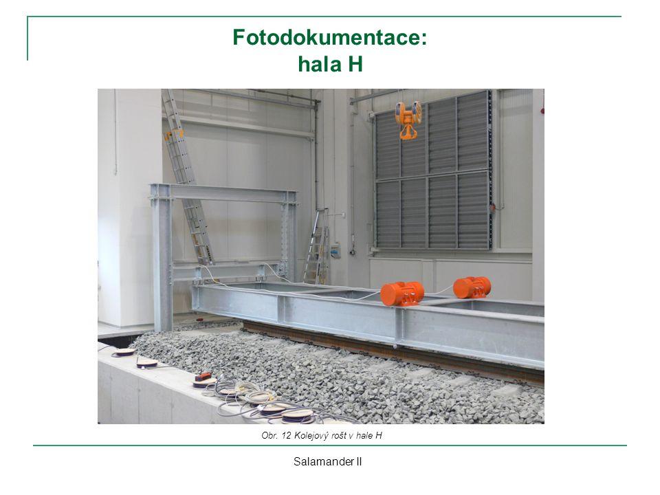 Fotodokumentace: hala H Salamander II Obr. 12 Kolejový rošt v hale H
