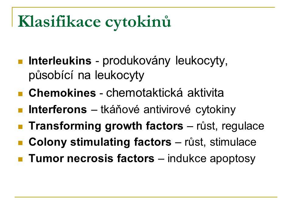 Klasifikace cytokinů Interleukins - produkovány leukocyty, působící na leukocyty Chemokines - chemotaktická aktivita Interferons – tkáňové antivirové cytokiny Transforming growth factors – růst, regulace Colony stimulating factors – růst, stimulace Tumor necrosis factors – indukce apoptosy