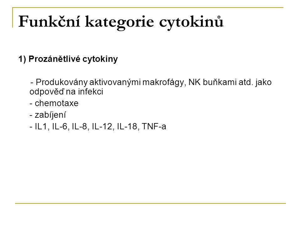 Funkční kategorie cytokinů 1) Prozánětlivé cytokiny - Produkovány aktivovanými makrofágy, NK buňkami atd. jako odpověď na infekci - chemotaxe - zabíje