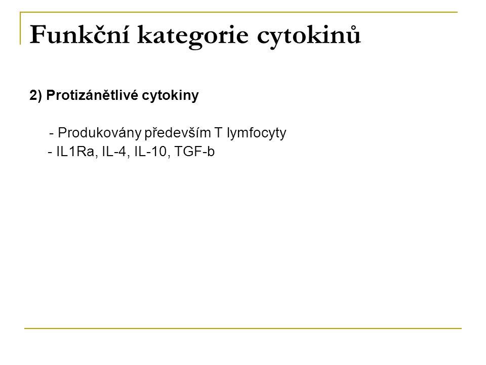 Funkční kategorie cytokinů 2) Protizánětlivé cytokiny - Produkovány především T lymfocyty - IL1Ra, IL-4, IL-10, TGF-b