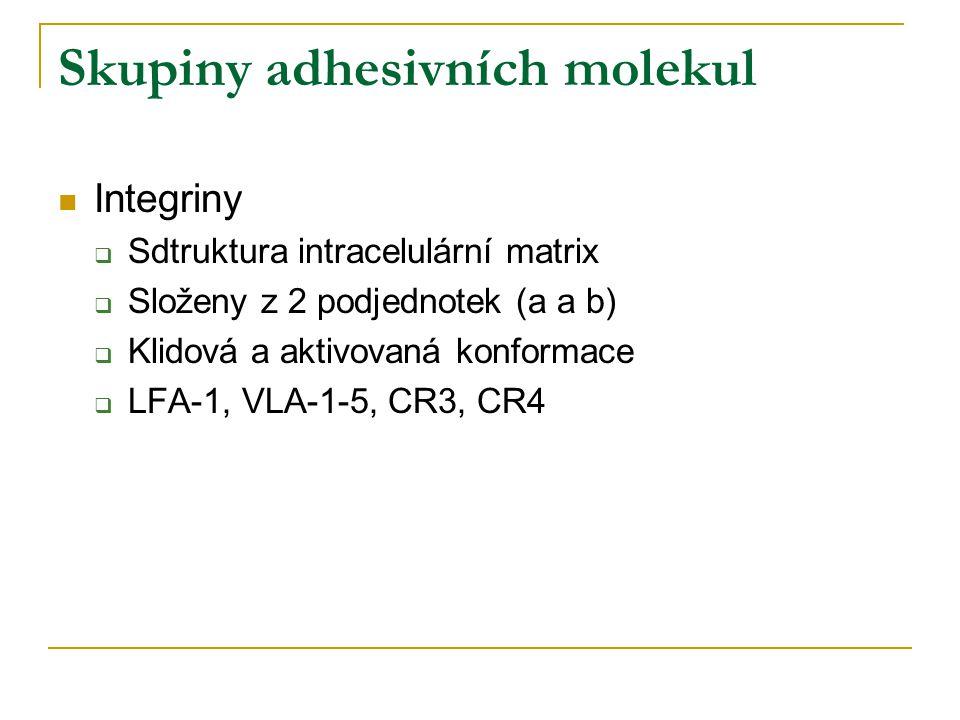 Skupiny adhesivních molekul Integriny  Sdtruktura intracelulární matrix  Složeny z 2 podjednotek (a a b)  Klidová a aktivovaná konformace  LFA-1, VLA-1-5, CR3, CR4