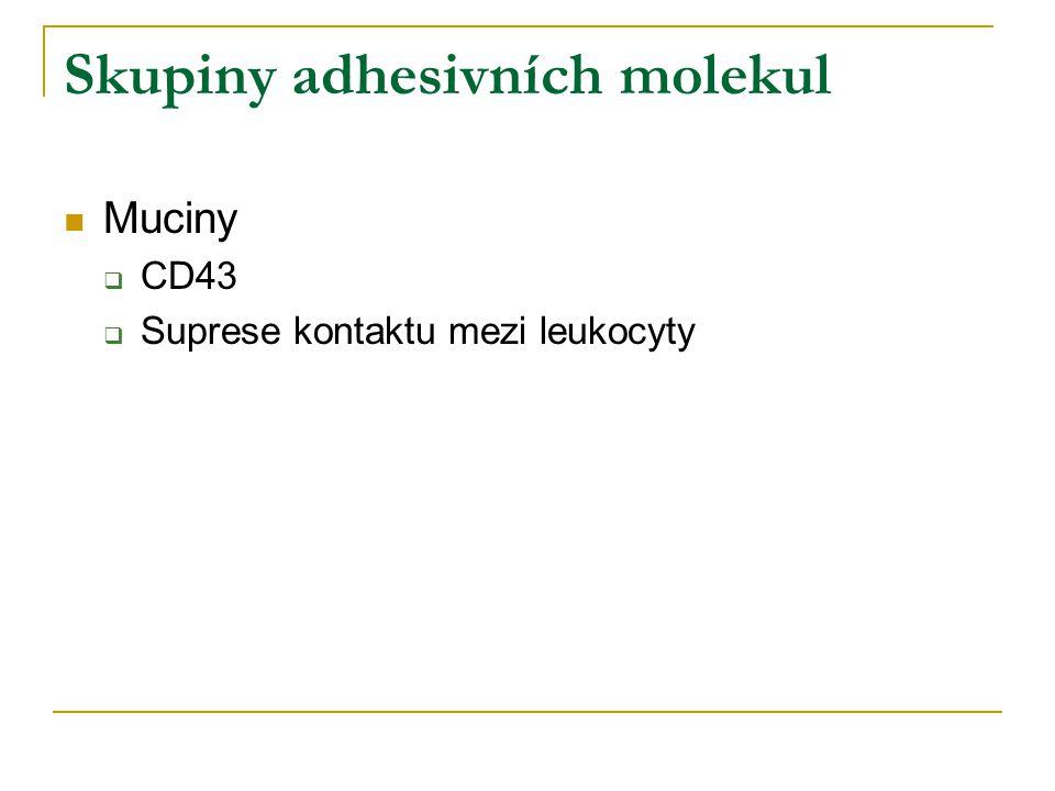 Skupiny adhesivních molekul Muciny  CD43  Suprese kontaktu mezi leukocyty