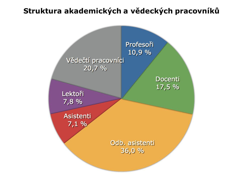 Struktura akademických a vědeckých pracovníků