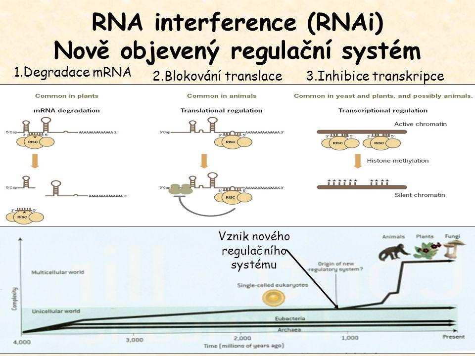 1.Degradace mRNA 2.Blokování translace3.Inhibice transkripce Vznik nového regulačního systému