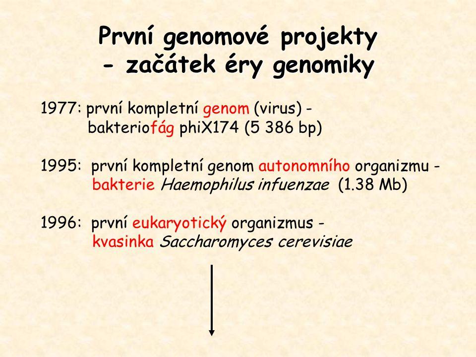První genomové projekty - začátek éry genomiky 1977: první kompletní genom (virus) - bakteriofág phiX174 (5 386 bp) 1995: první kompletní genom autono