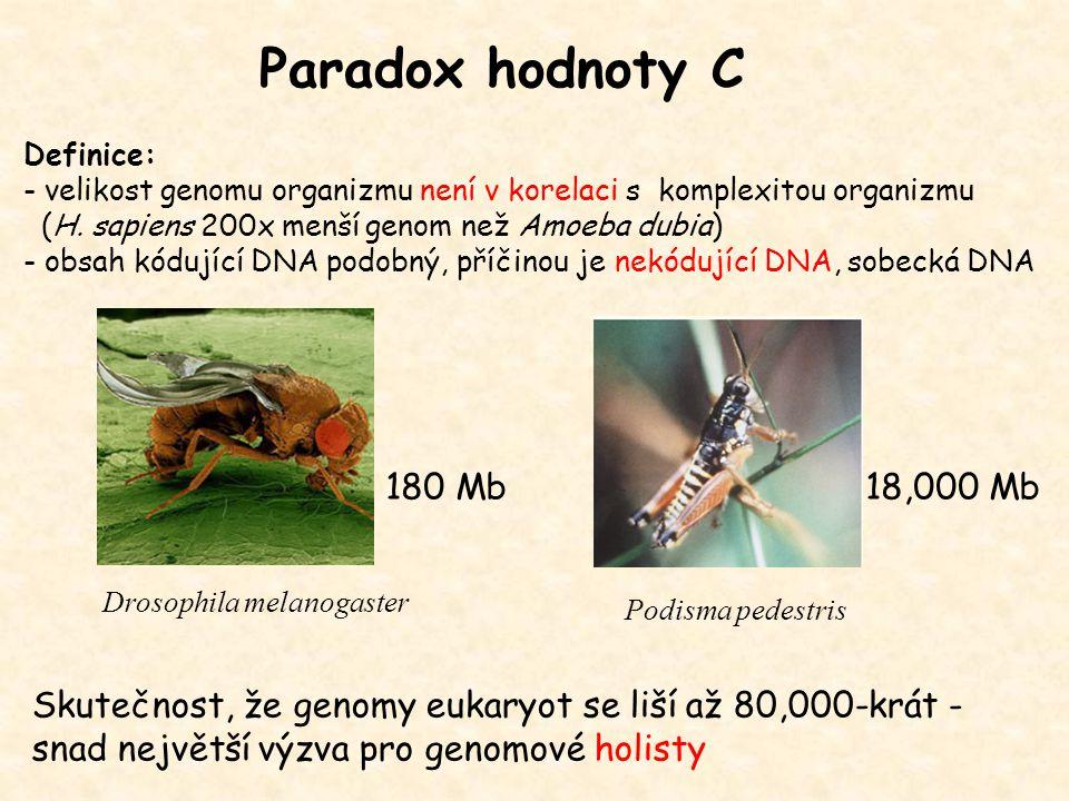 Paradox hodnoty C Definice: - velikost genomu organizmu není v korelaci s komplexitou organizmu (H. sapiens 200x menší genom než Amoeba dubia) - obsah