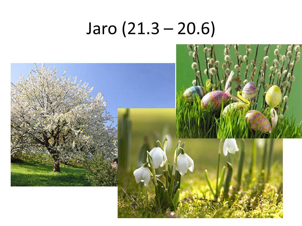 Jaro (21.3 – 20.6)