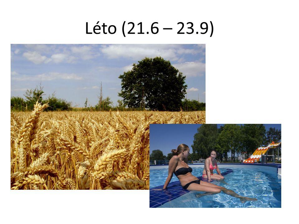 Léto (21.6 – 23.9)