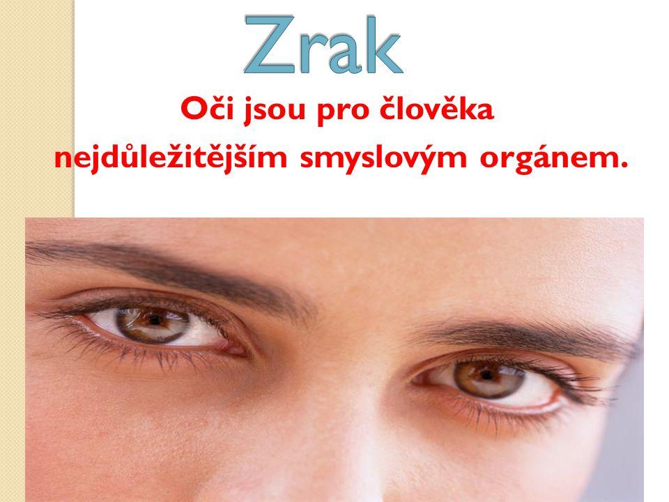 Oči jsou pro člověka nejdůležitějším smyslovým orgánem.
