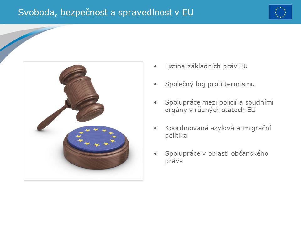Svoboda, bezpečnost a spravedlnost v EU Listina základních práv EU Společný boj proti terorismu Spolupráce mezi policií a soudními orgány v různých st