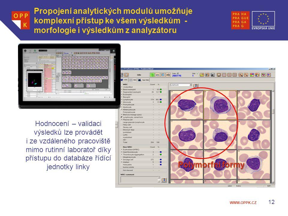 WWW.OPPK.CZ Propojení analytických modulů umožňuje komplexní přístup ke všem výsledkům - morfologie i výsledkům z analyzátoru 12 Polymorfní formy Hodn