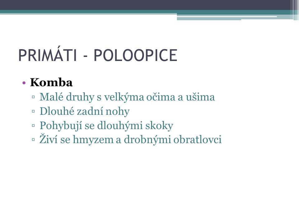 Komba