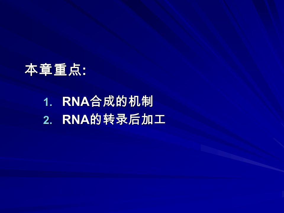 本章重点 : 1. RNA 合成的机制 2. RNA 的转录后加工