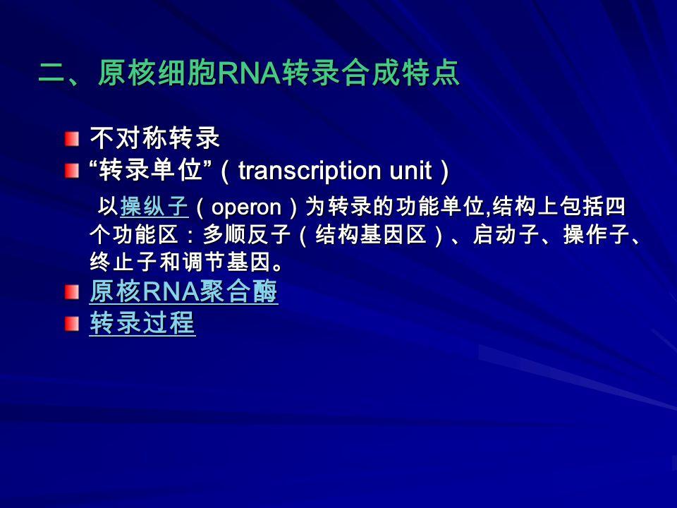 不对称转录 转录单位 ( transcription unit ) 以操纵子( operon )为转录的功能单位, 结构上包括四 个功能区:多顺反子(结构基因区)、启动子、操作子、 终止子和调节基因。 以操纵子( operon )为转录的功能单位, 结构上包括四 个功能区:多顺反子(结构基因区)、启动子、操作子、 终止子和调节基因。操纵子 原核 RNA 聚合酶 原核 RNA 聚合酶 转录过程 二、原核细胞 RNA 转录合成特点