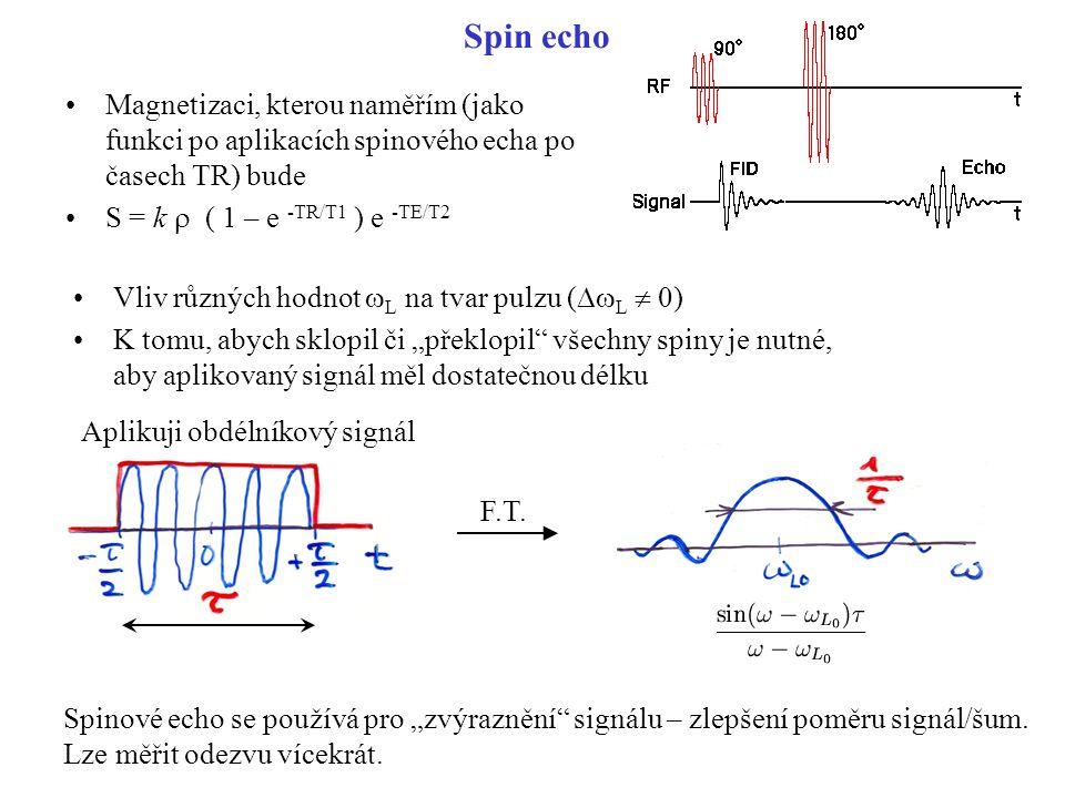 """Spin echo Vliv různých hodnot  L na tvar pulzu (  L  0) K tomu, abych sklopil či """"překlopil"""" všechny spiny je nutné, aby aplikovaný signál měl dos"""