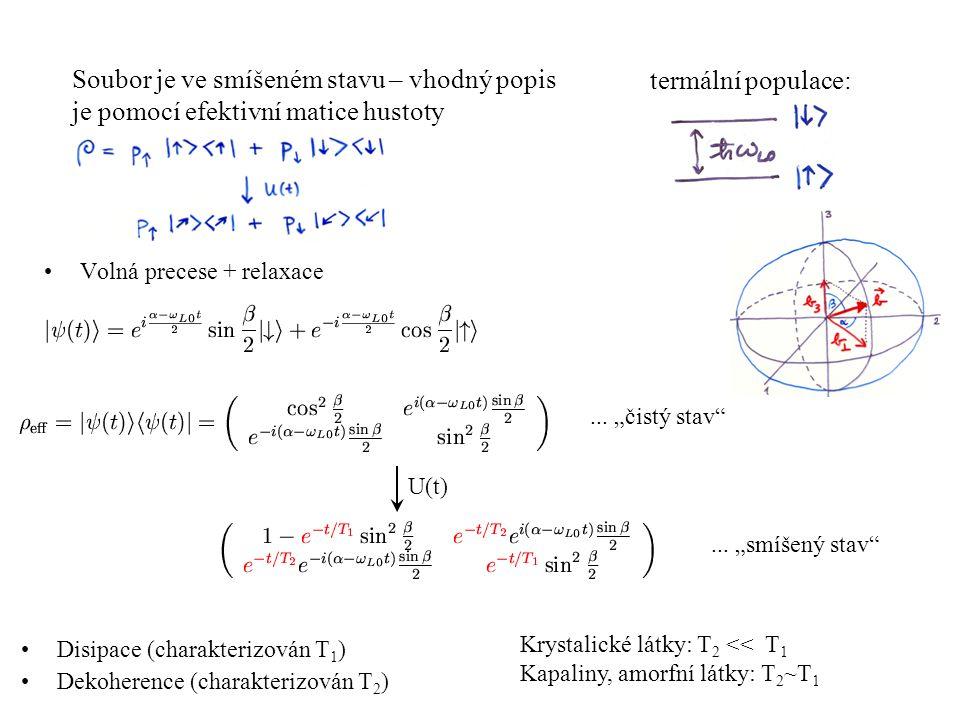 Volná precese + relaxace Disipace (charakterizován T 1 ) Dekoherence (charakterizován T 2 ) Soubor je ve smíšeném stavu – vhodný popis je pomocí efekt