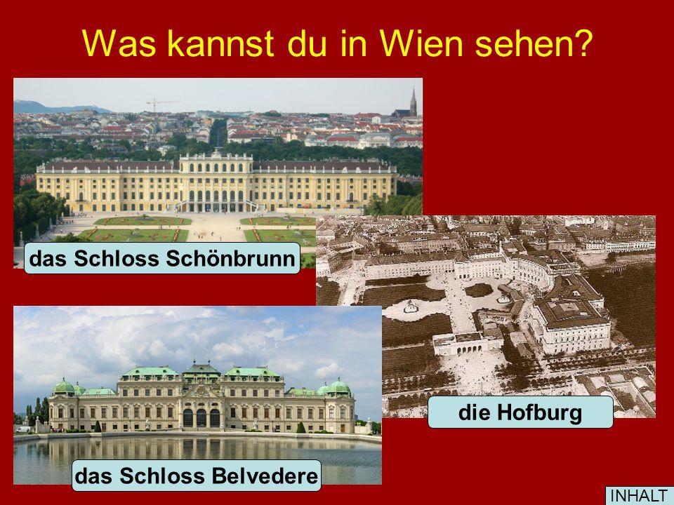 Was kannst du in Wien sehen? das Schloss Schönbrunn die Hofburg das Schloss Belvedere INHALT
