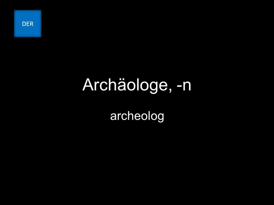 Archäologe, -n archeolog DER
