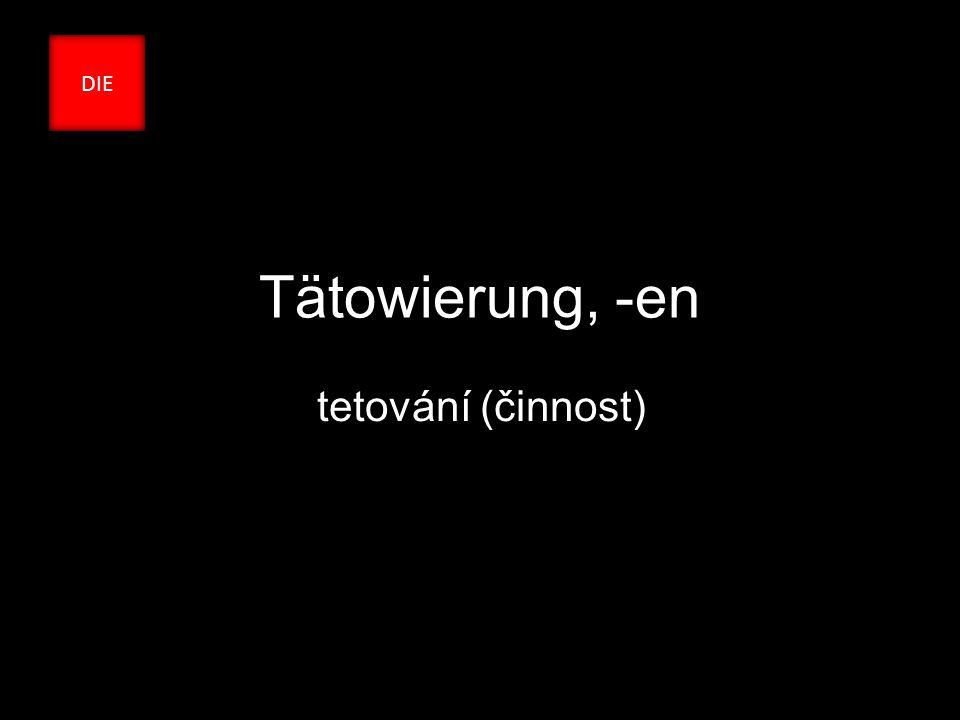 Tätowierung, -en tetování (činnost) DIE
