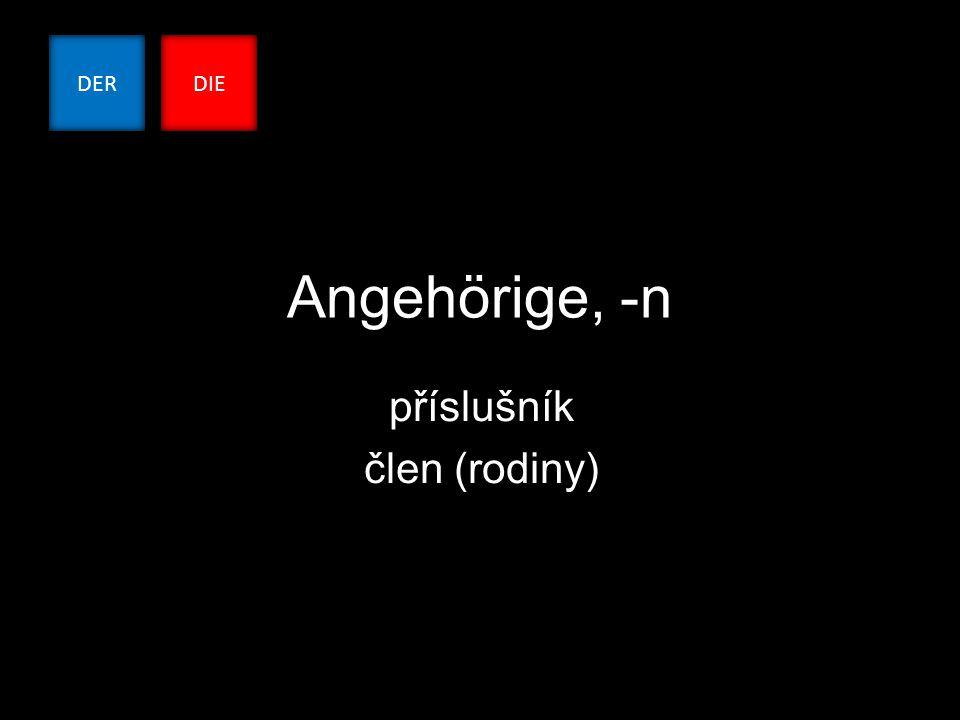 Angehörige, -n příslušník člen (rodiny) DERDIE