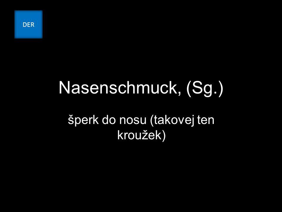 Nasenschmuck, (Sg.) šperk do nosu (takovej ten kroužek) DER