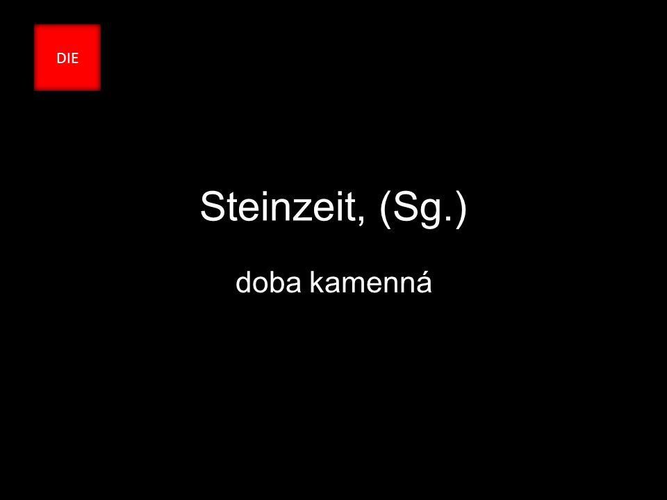 Steinzeit, (Sg.) doba kamenná DIE