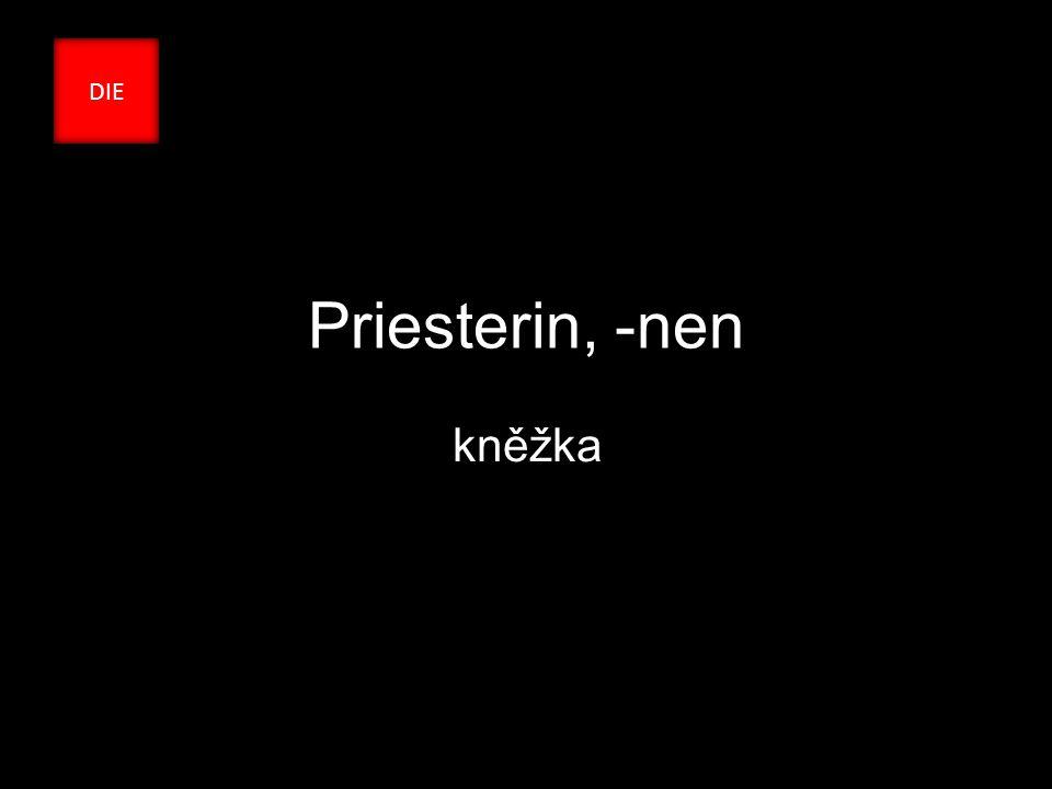 Priesterin, -nen kněžka DIE
