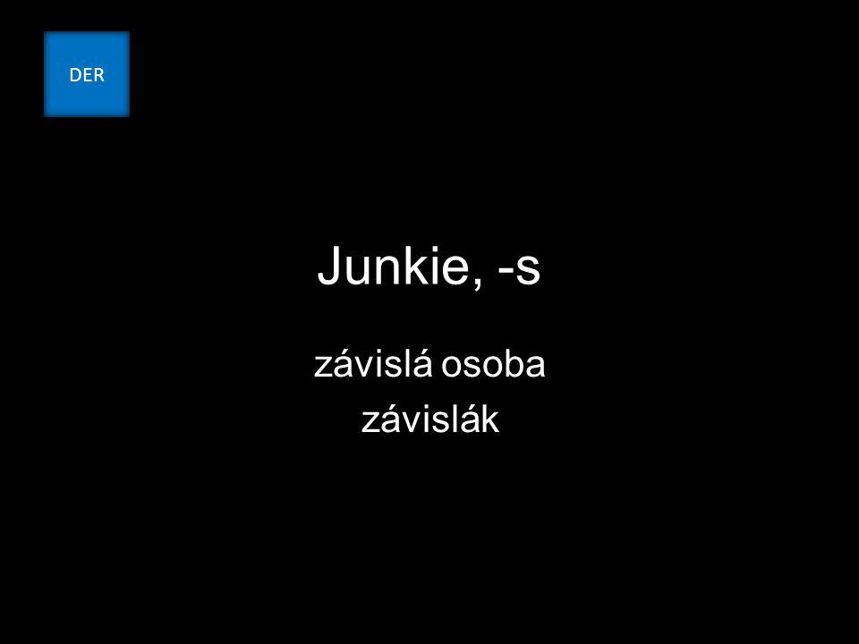 Junkie, -s závislá osoba závislák DER