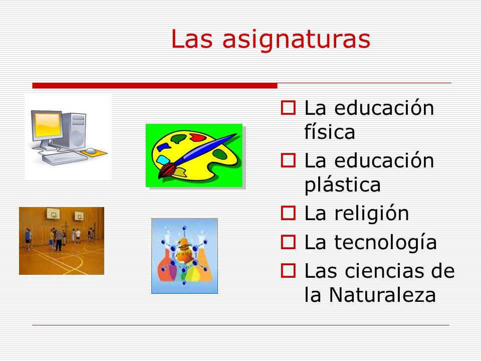 Las asignaturas  La educación física  La educación plástica  La religión  La tecnología  Las ciencias de la Naturaleza