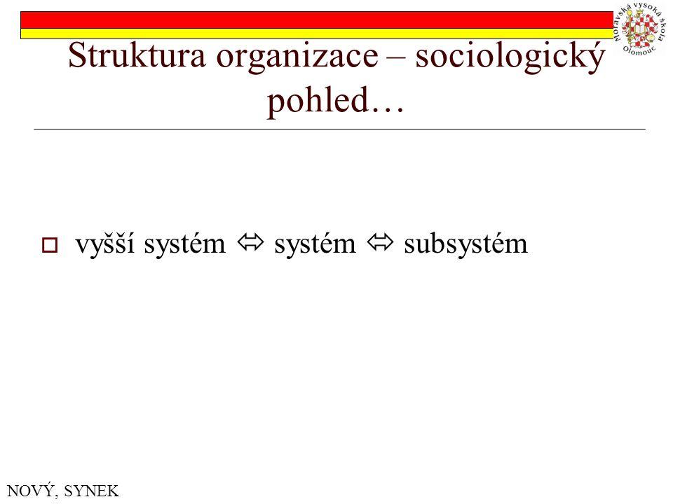 Struktura organizace – sociologický pohled…  vyšší systém  systém  subsystém NOVÝ, SYNEK