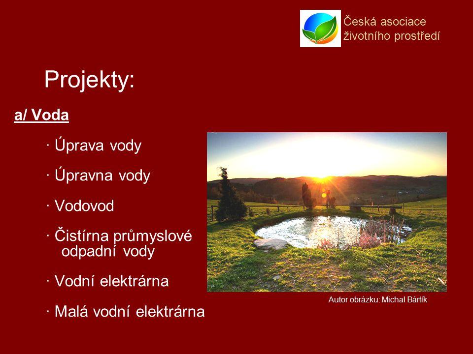 Česká asociace životního prostředí a/ Voda · Úprava vody · Úpravna vody · Vodovod · Čistírna průmyslové odpadní vody · Vodní elektrárna · Malá vodní elektrárna Projekty: Autor obrázku: Michal Bártík