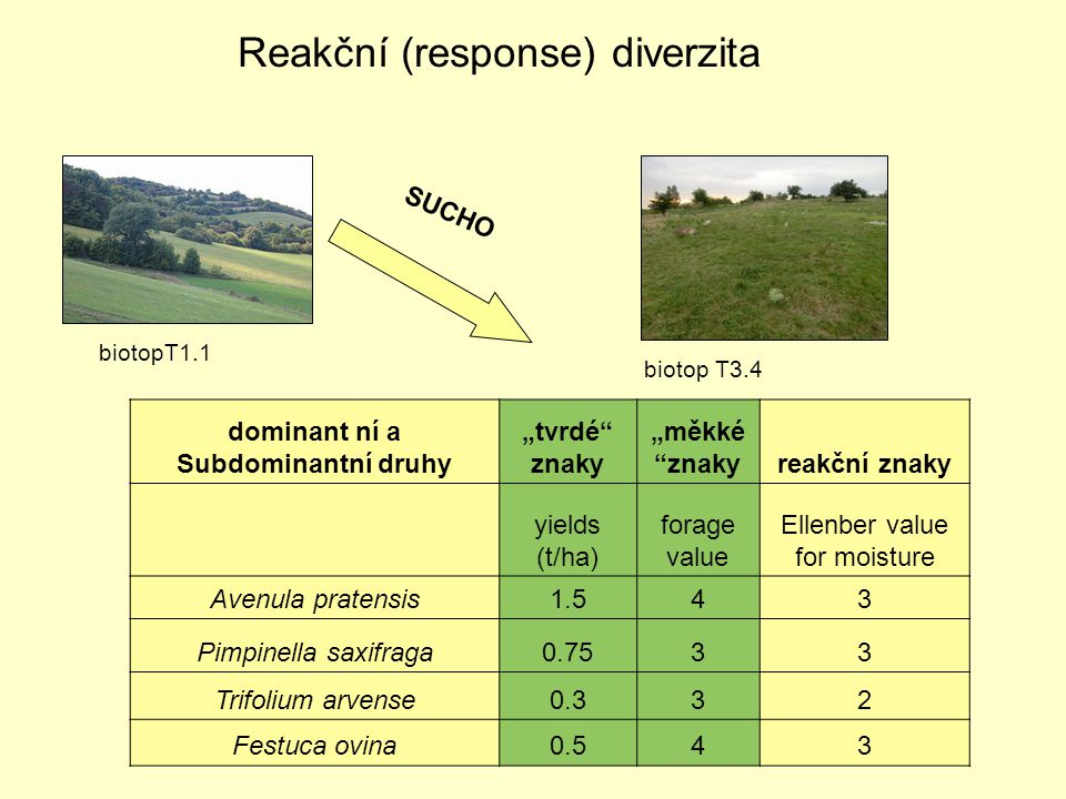 "Reakční (response) diverzita SUCHO biotopT1.1 biotop T3.4 dominant ní a Subdominantní druhy ""tvrdé znaky ""měkké znakyreakční znaky yields (t/ha) forage value Ellenber value for moisture Avenula pratensis1.51.543 Pimpinella saxifraga0.7533 Trifolium arvense0.30.332 Festuca ovina0.50.543"