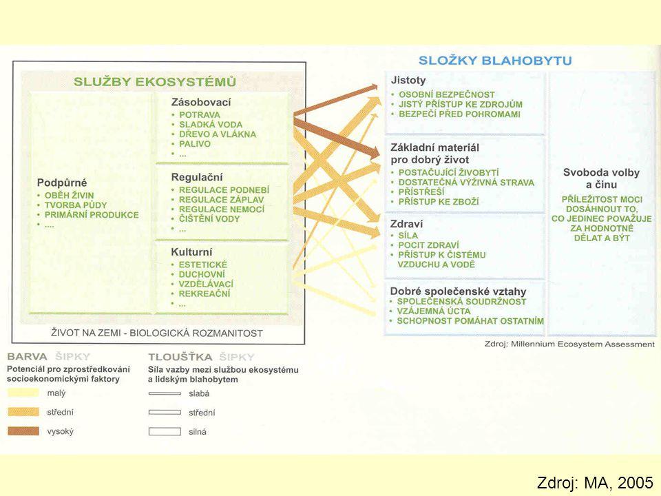 Ekosystémové funkce dle De Groota (2002) : regulační ekosystém reguluje základní procesy a vytváří životadárný systém pomocí bio-geochemických cyklů: transport energie do biomasy, zásoba a přeměna minerálů a energie v potravním řetězci, mineralizace organických látek, vytváření biotopů ekosystém vytváří prostor pro život a reprodukci rostlin a živočichů) produkční přeměna energie na uhlovodíkové struktury – služby: produkce potravy, materiálů, energetických zdrojů..