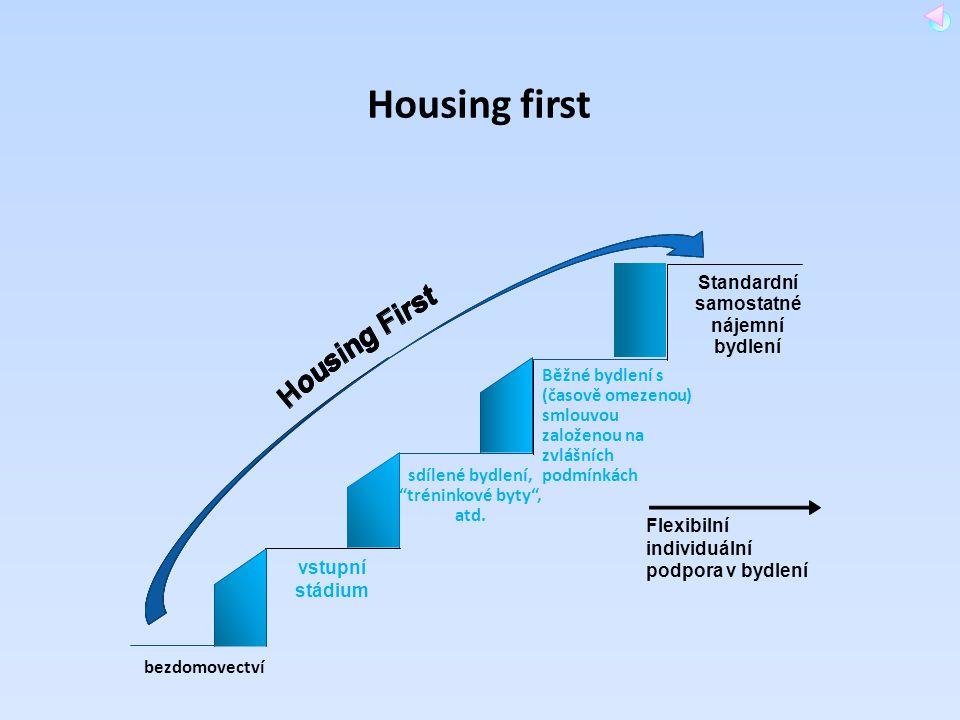 """bezdomovectví sdílené bydlení, """"tréninkové byty"""", atd. Běžné bydlení s (časově omezenou) smlouvou založenou na zvlášních podmínkách Standardní samosta"""