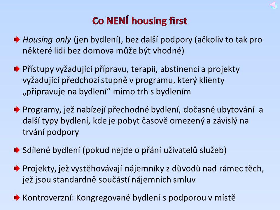 Housing only (jen bydlení), bez další podpory (ačkoliv to tak pro některé lidi bez domova může být vhodné) Přístupy vyžadující přípravu, terapii, abst