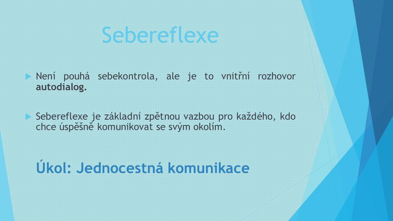 Sebereflexe  Není pouhá sebekontrola, ale je to vnitřní rozhovor autodialog.  Sebereflexe je základní zpětnou vazbou pro každého, kdo chce úspěšně k