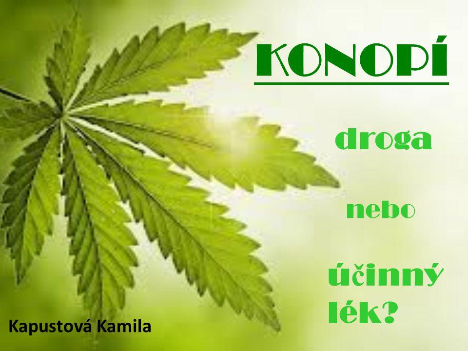 Marihuana je v mnohém odlišná od běžných pouličních drog, například způsobem konzumace.