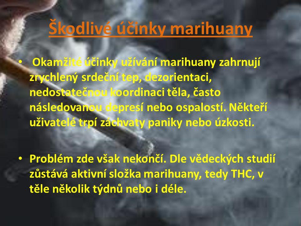 Škodlivé účinky marihuany Okamžité účinky užívání marihuany zahrnují zrychlený srdeční tep, dezorientaci, nedostatečnou koordinaci těla, často následo