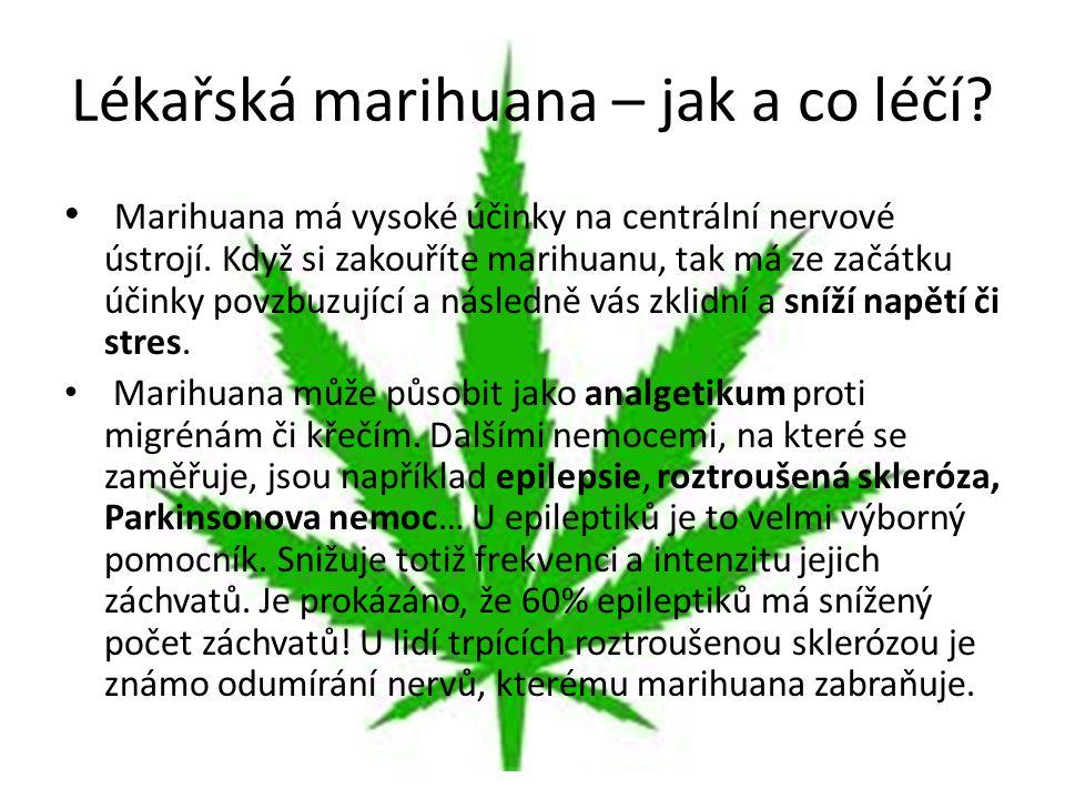 Lékařská marihuana – jak a co léčí? Marihuana má vysoké účinky na centrální nervové ústrojí. Když si zakouříte marihuanu, tak má ze začátku účinky pov