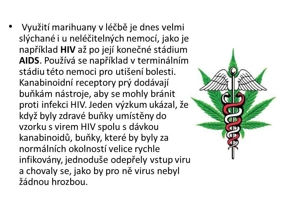 Využití marihuany v léčbě je dnes velmi slýchané i u neléčitelných nemocí, jako je například HIV až po její konečné stádium AIDS. Používá se například