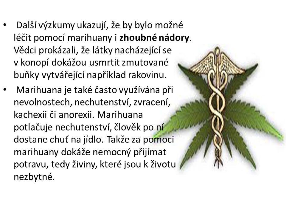 Další výzkumy ukazují, že by bylo možné léčit pomocí marihuany i zhoubné nádory. Vědci prokázali, že látky nacházející se v konopí dokážou usmrtit zmu