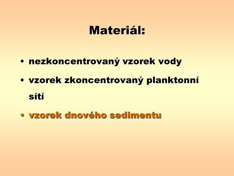 Materiál: nezkoncentrovaný vzorek vodynezkoncentrovaný vzorek vody vzorek zkoncentrovaný planktonní sítívzorek zkoncentrovaný planktonní sítí vzorek d