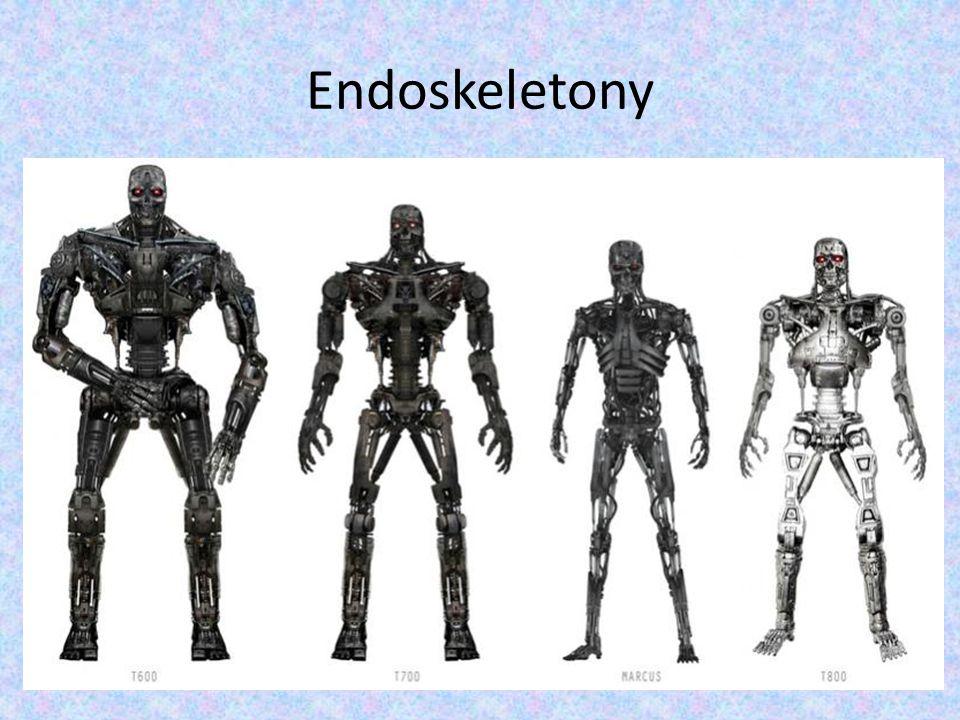 Endoskeletony