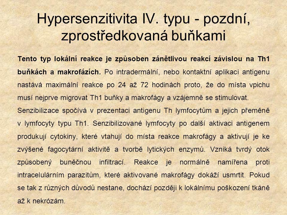 Hypersenzitivita IV. typu - pozdní, zprostředkovaná buňkami Tento typ lokální reakce je způsoben zánětlivou reakcí závislou na Th1 buňkách a makrofází