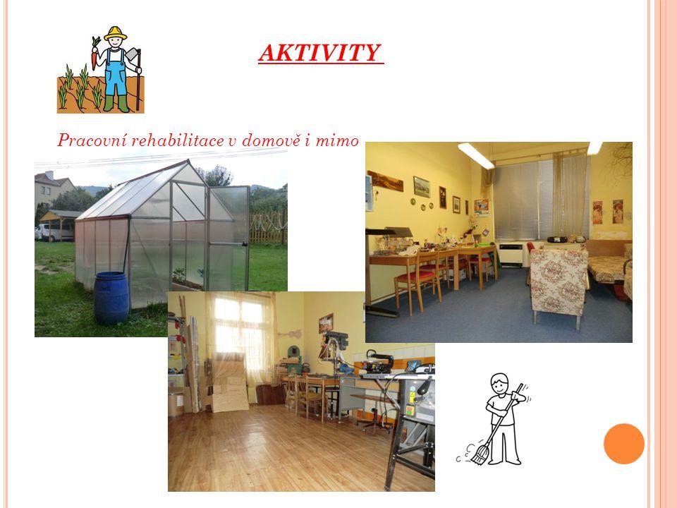 AKTIVITY Pracovní rehabilitace v domově i mimo