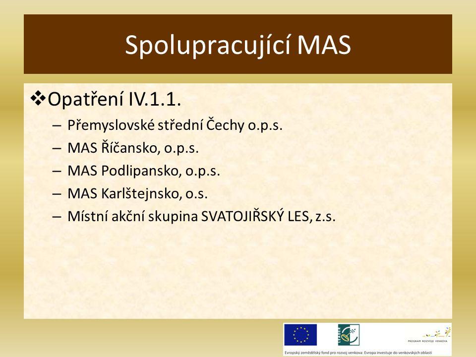  Opatření IV.1.1. – Přemyslovské střední Čechy o.p.s.