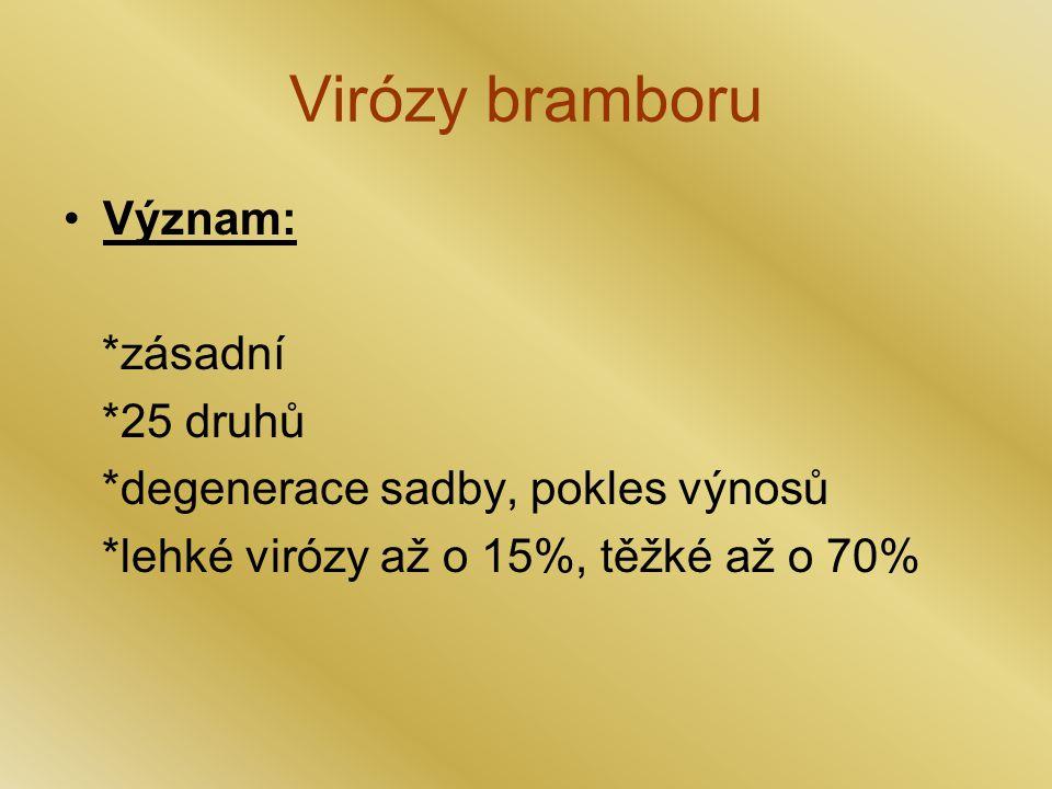 Virózy bramboru Význam: *zásadní *25 druhů *degenerace sadby, pokles výnosů *lehké virózy až o 15%, těžké až o 70%